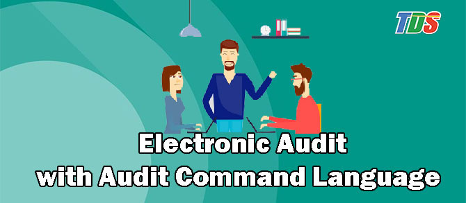 Foto Electronic Audit with Audit Command Language