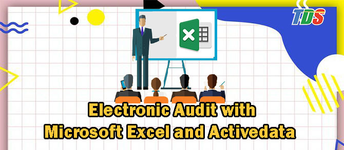 Foto Electronic Audit with Microsoft Excel and Activedata