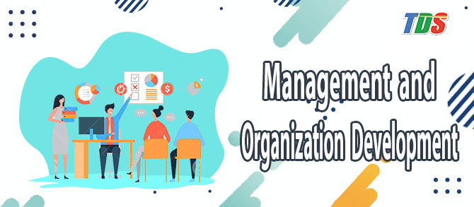 Foto Management and Organization development