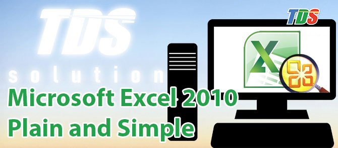 Foto Microsoft Excel 2010 Plain and Simple