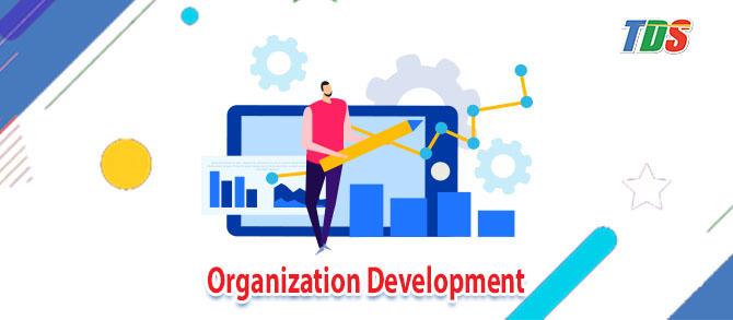 Foto Organization Development